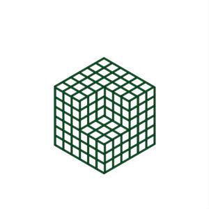 Cube illusion – T42