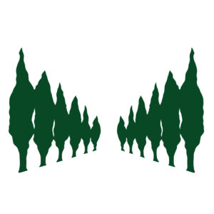 Perspective d'arbres – F08