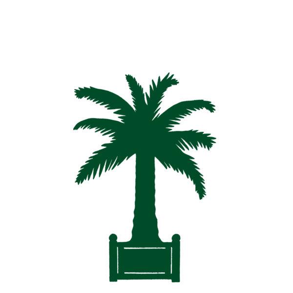 Palmier – F11