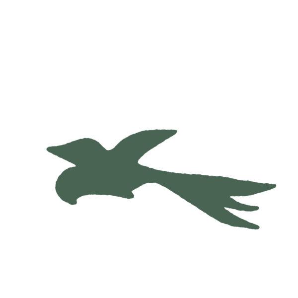 Oiseau en vol – F43